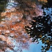 Acqua impressionista, parte due